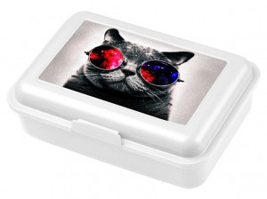 Lunch Box Galaxy Sunglasses Cat